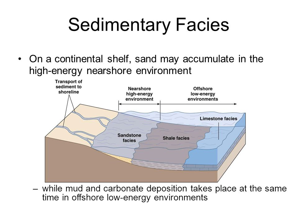 Sedimentary Facies On a continental shelf, sand may accumulate in the high-energy nearshore environment.