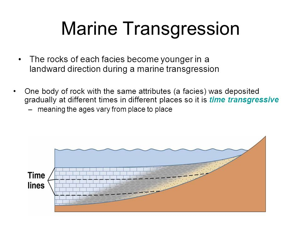 Marine Transgression The rocks of each facies become younger in a landward direction during a marine transgression.