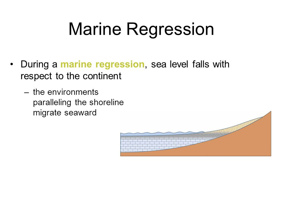 Marine Regression During a marine regression, sea level falls with respect to the continent.