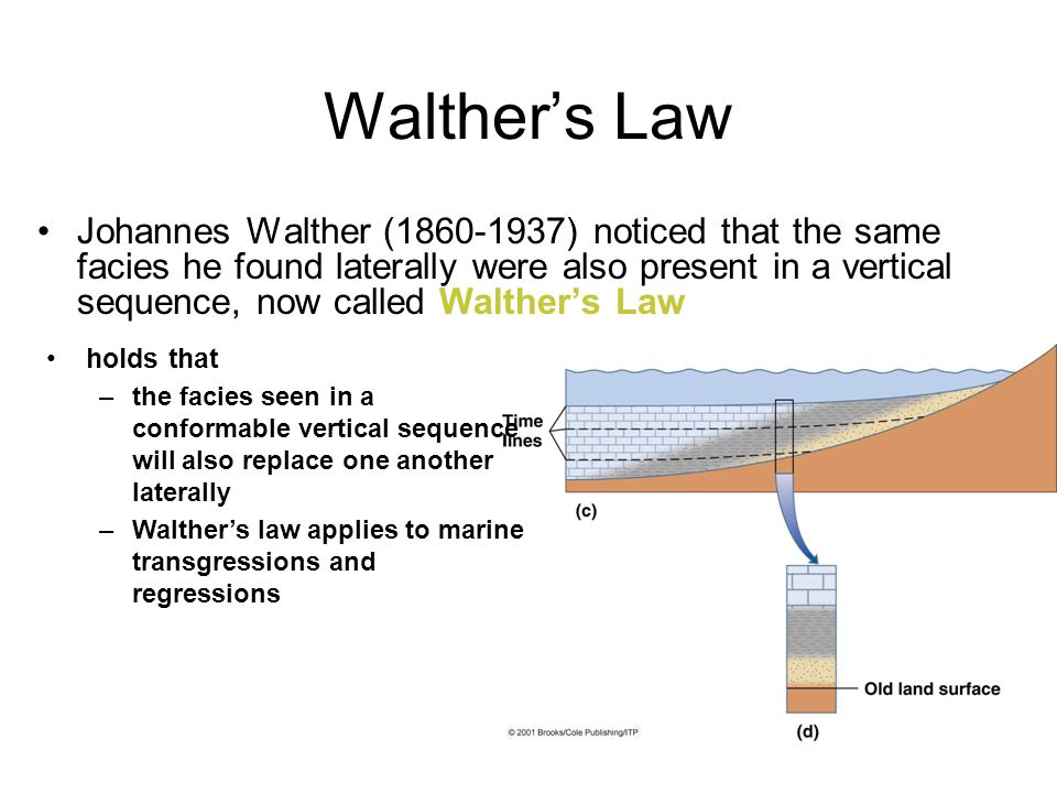 Walther's Law