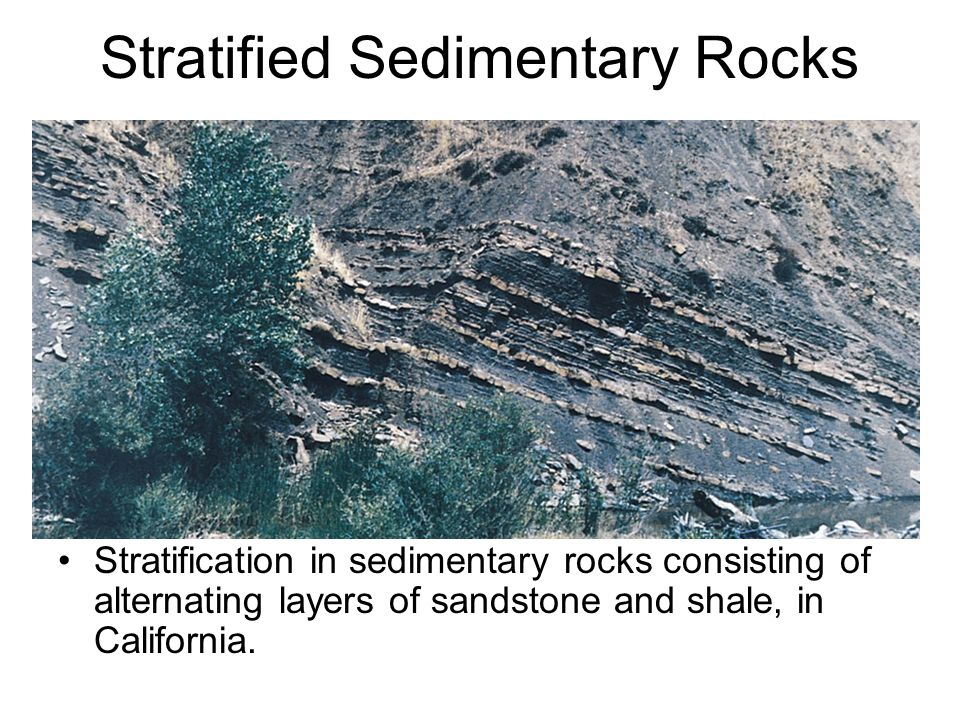 Stratified Sedimentary Rocks