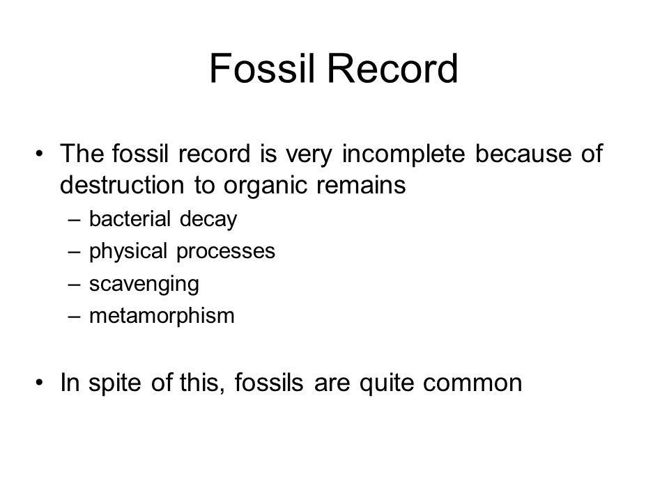 Fossil Record The fossil record is very incomplete because of destruction to organic remains. bacterial decay.