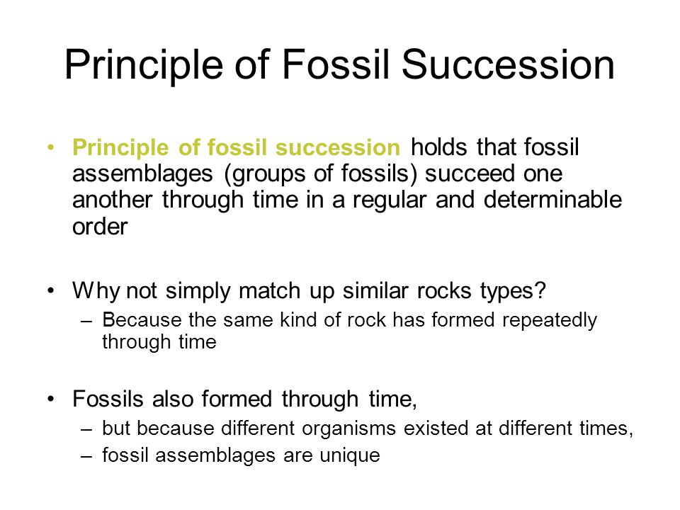 Principle of Fossil Succession