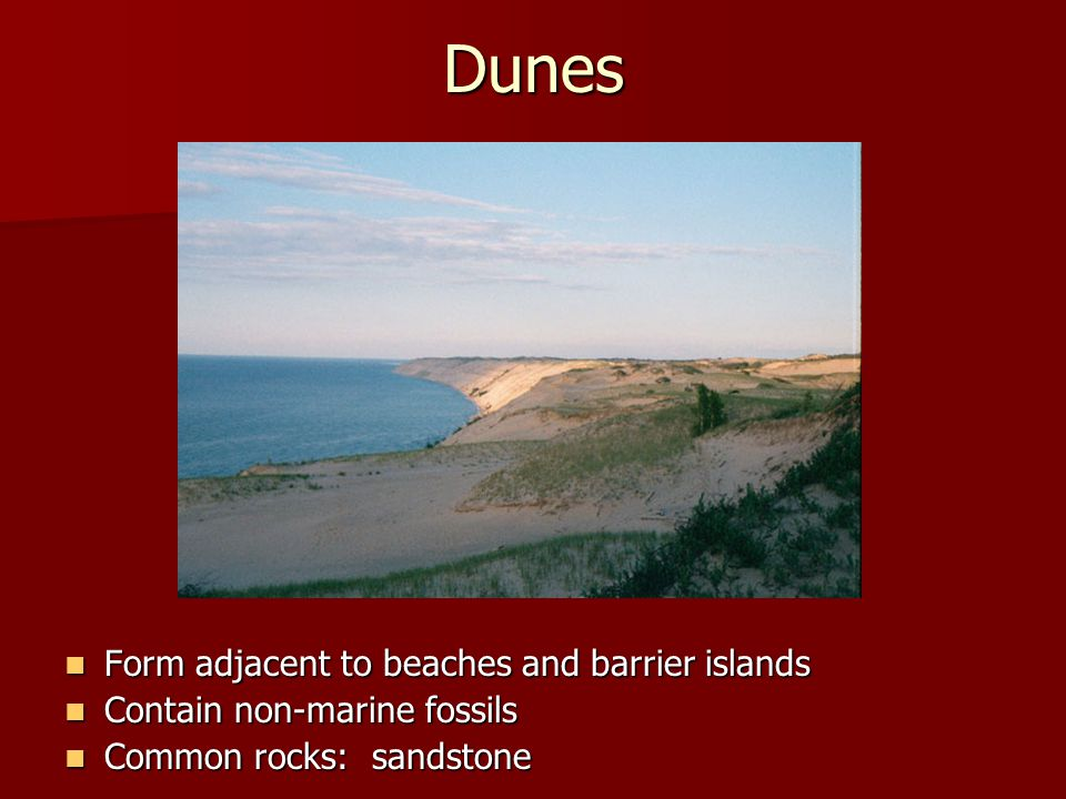Dunes Form adjacent to beaches and barrier islands