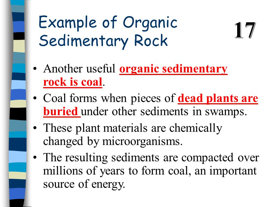 Example of Organic Sedimentary Rock