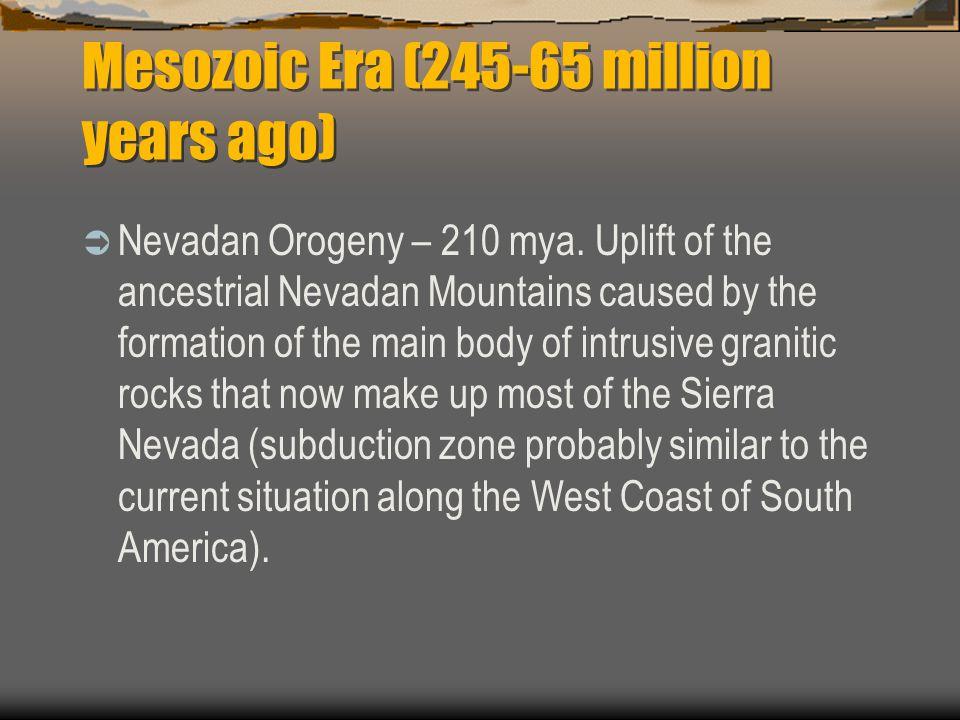 Mesozoic Era (245-65 million years ago)