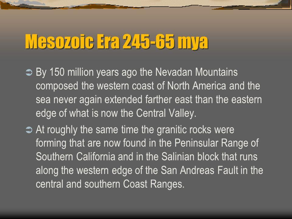 Mesozoic Era 245-65 mya