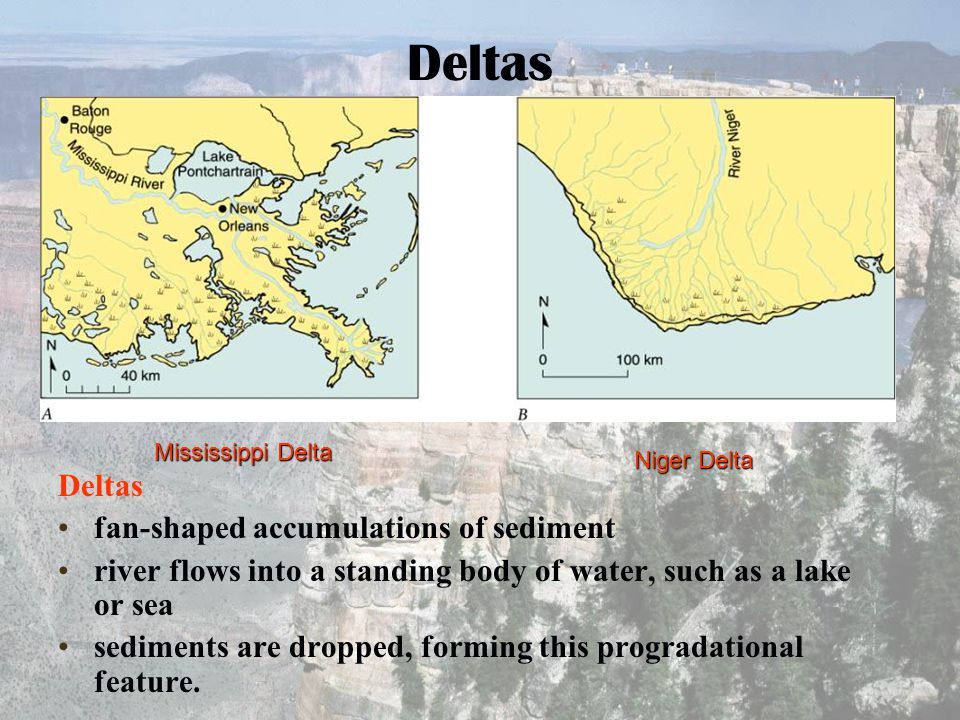 Deltas Deltas fan-shaped accumulations of sediment