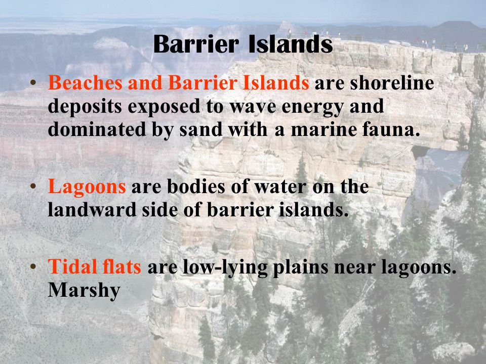 Barrier Islands Beaches and Barrier Islands are shoreline deposits exposed to wave energy and dominated by sand with a marine fauna.