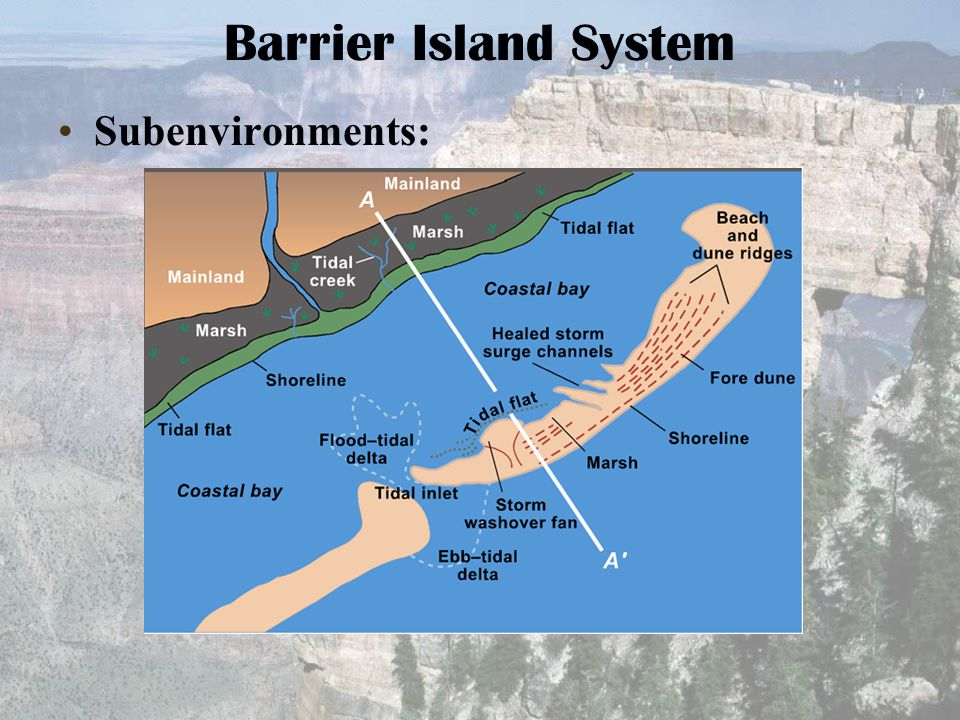 Barrier Island System Subenvironments: