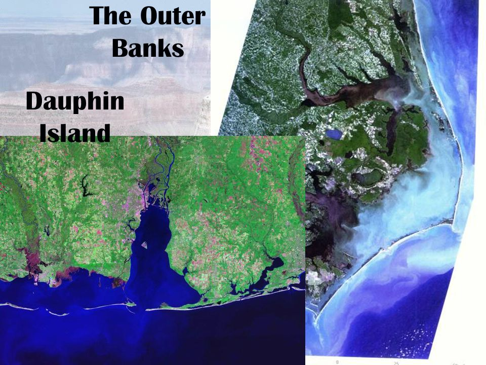 The Outer Banks Dauphin Island