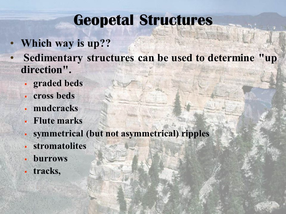 Geopetal Structures Which way is up