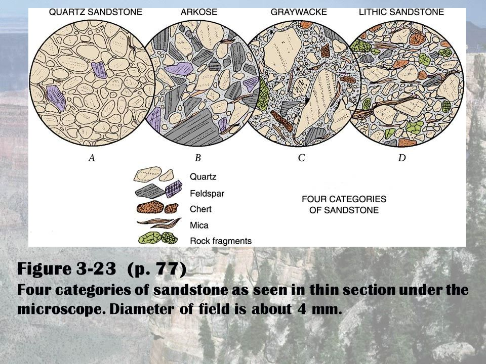 Figure 3-23 (p. 77) Four categories of sandstone as seen in thin section under the microscope.