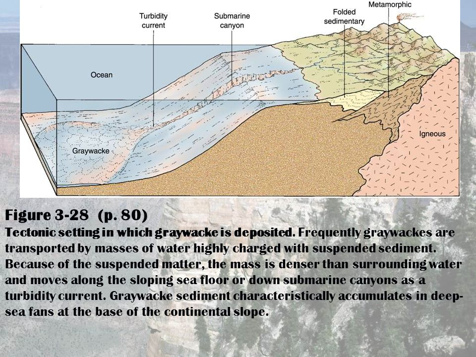 Figure 3-28 (p. 80) Tectonic setting in which graywacke is deposited