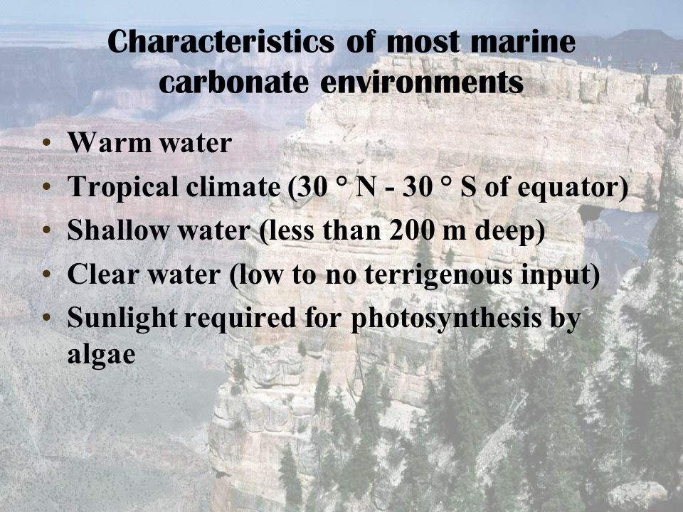 Characteristics of most marine carbonate environments