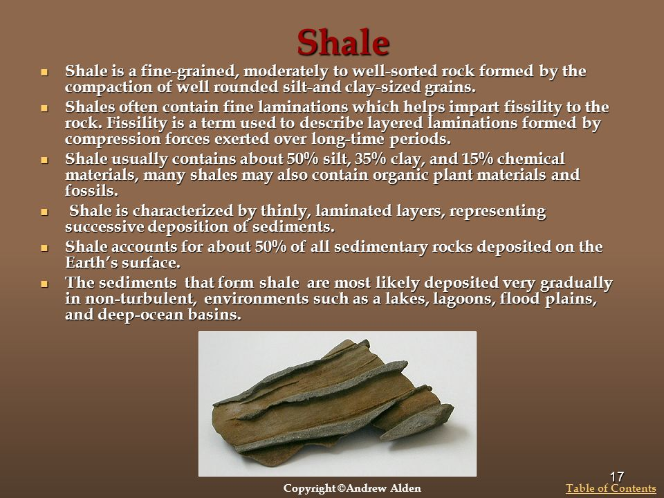 Shale Shale is a fine-grained, moderately to well-sorted rock formed by the compaction of well rounded silt-and clay-sized grains.