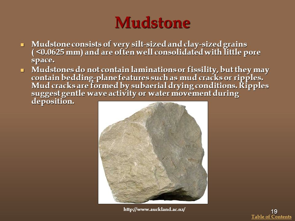 Mudstone Mudstone consists of very silt-sized and clay-sized grains ( <0.0625 mm) and are often well consolidated with little pore space.