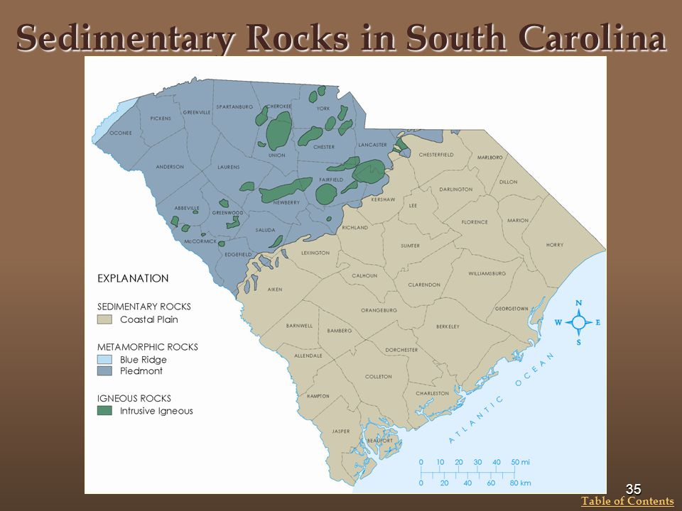 Sedimentary Rocks in South Carolina