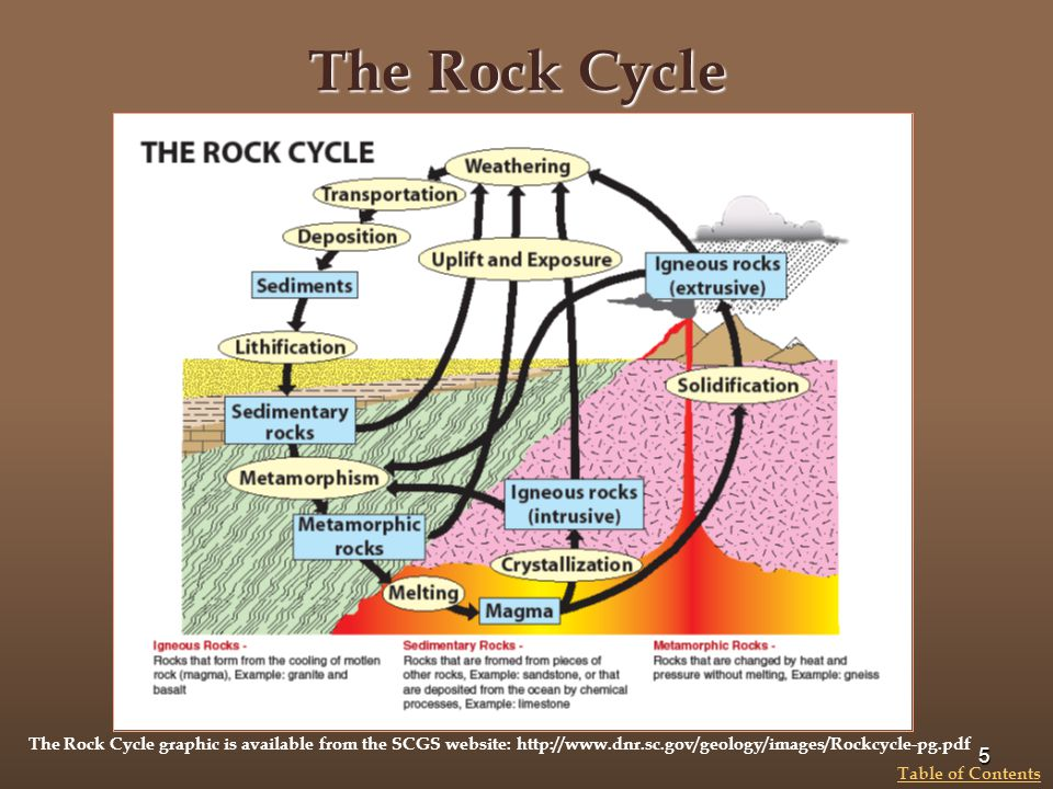 The Rock Cycle The Rock Cycle graphic is available from the SCGS website: http://www.dnr.sc.gov/geology/images/Rockcycle-pg.pdf.