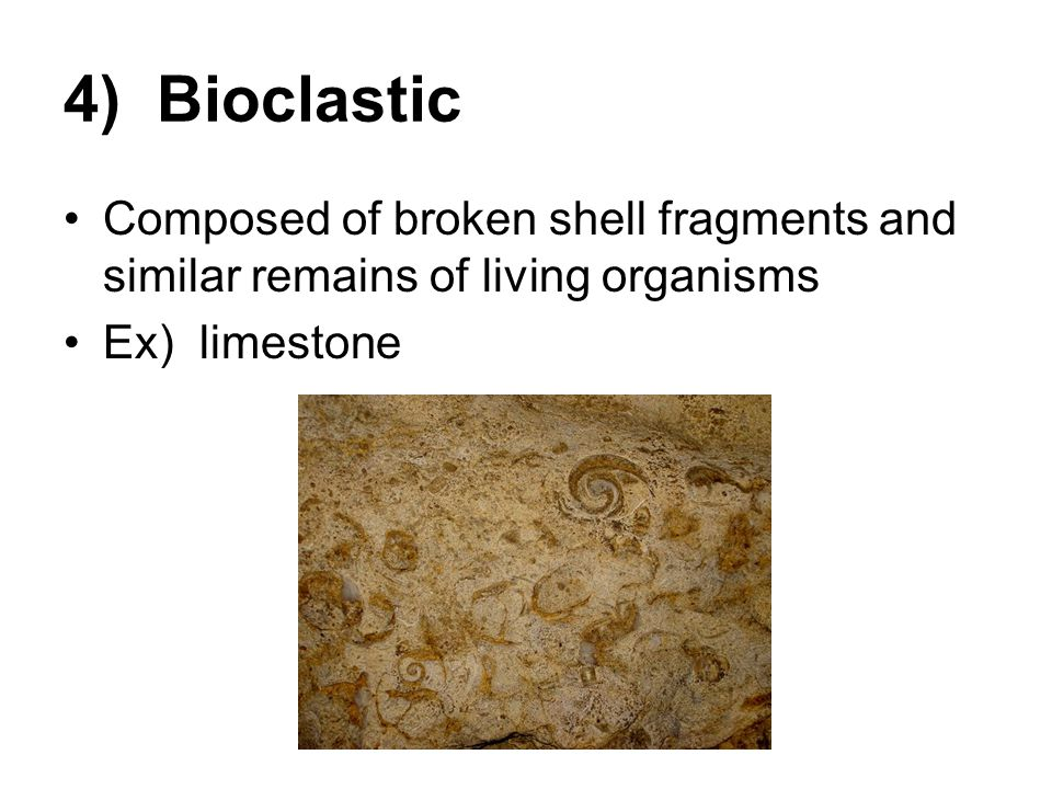 4) Bioclastic Composed of broken shell fragments and similar remains of living organisms.