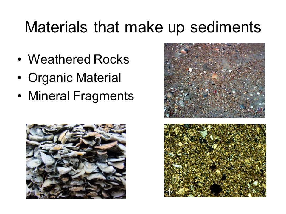 Materials that make up sediments