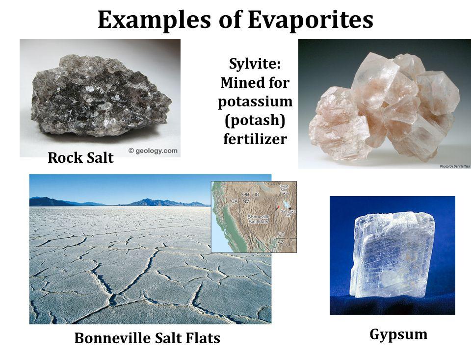 Examples of Evaporites