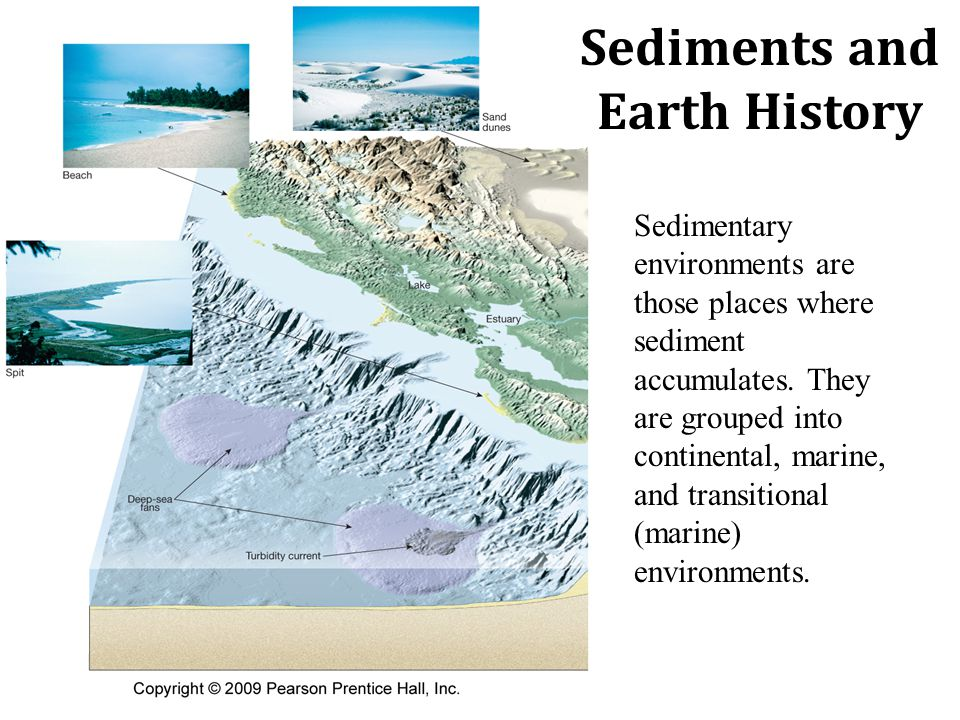 Sediments and Earth History