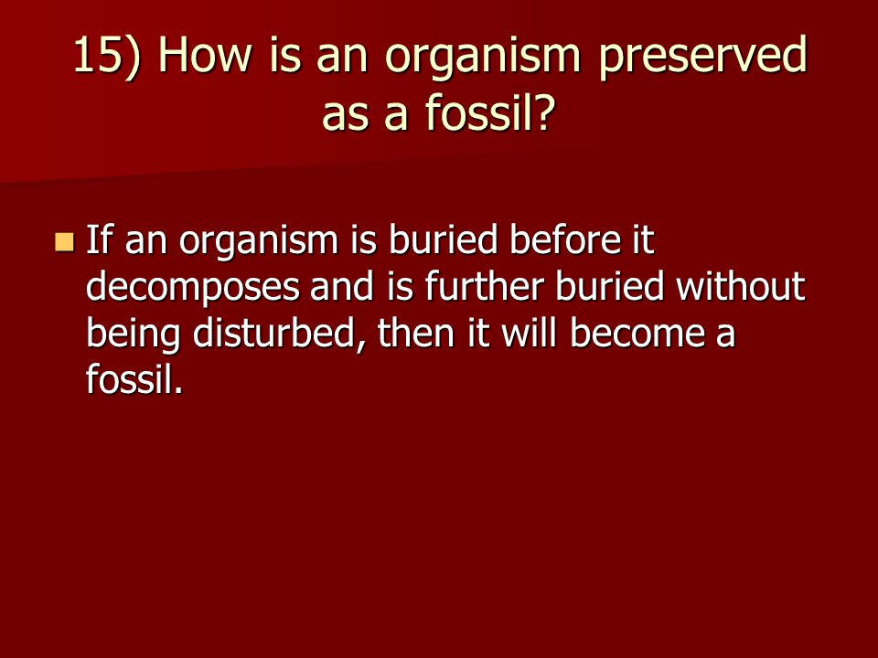 15) How is an organism preserved as a fossil