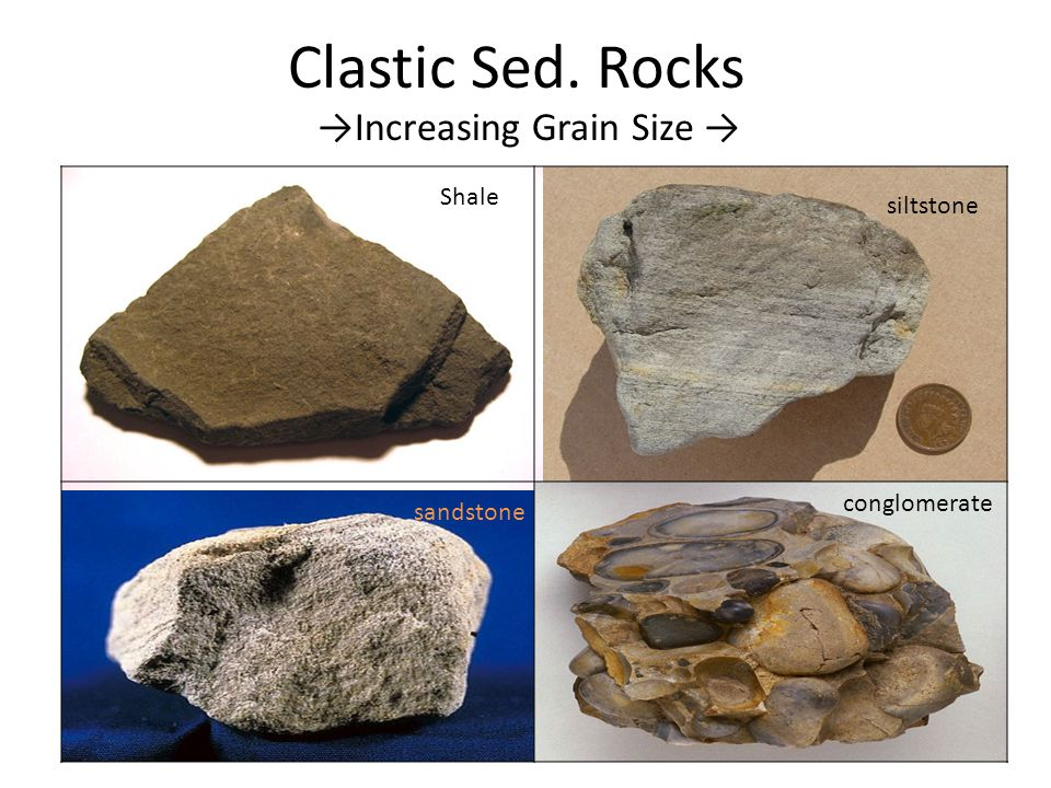 Clastic Sed. Rocks →Increasing Grain Size → Shale siltstone