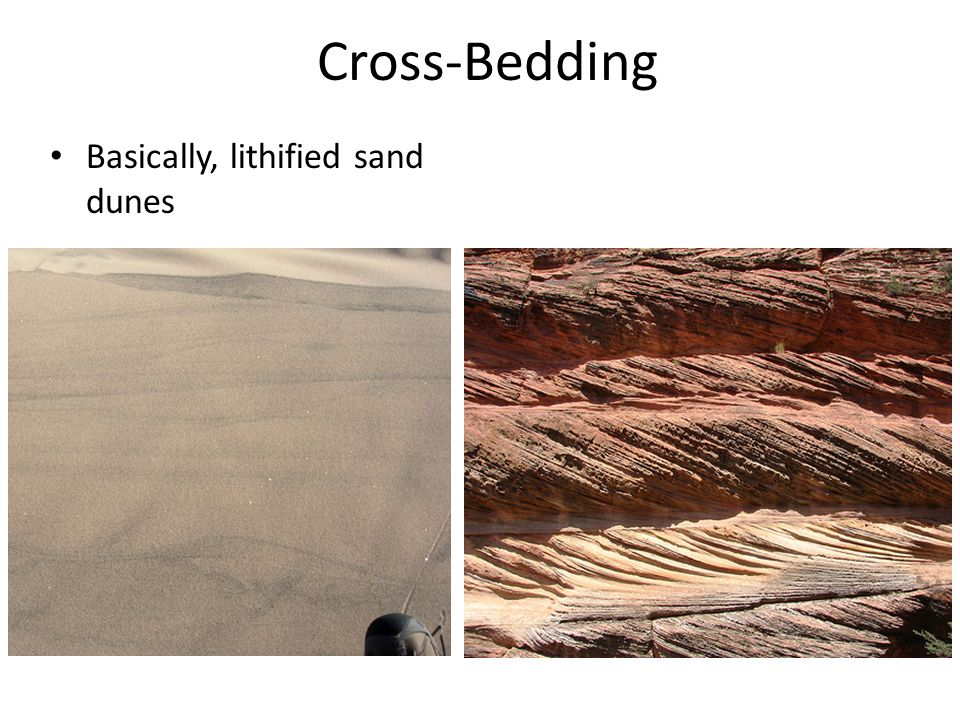 Cross-Bedding Basically, lithified sand dunes