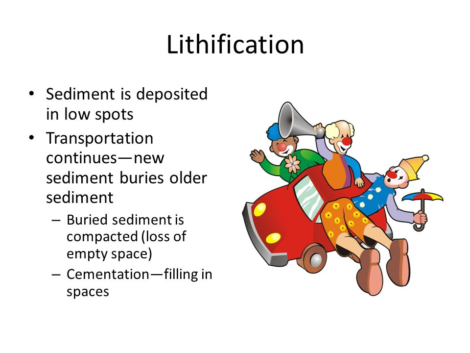Lithification Sediment is deposited in low spots