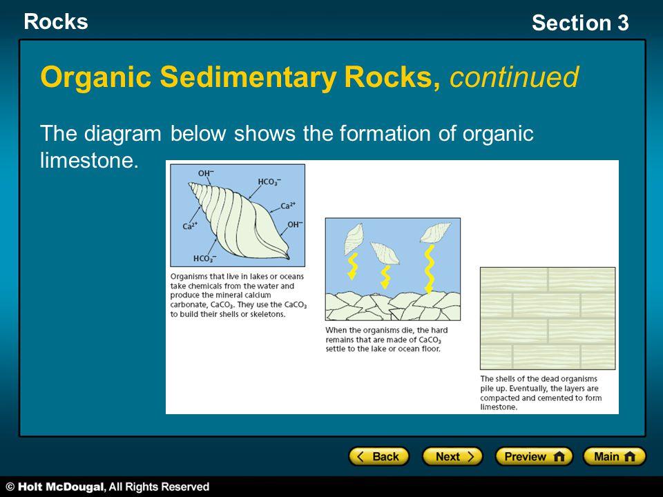 Organic Sedimentary Rocks, continued