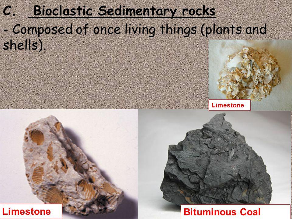 C. Bioclastic Sedimentary rocks