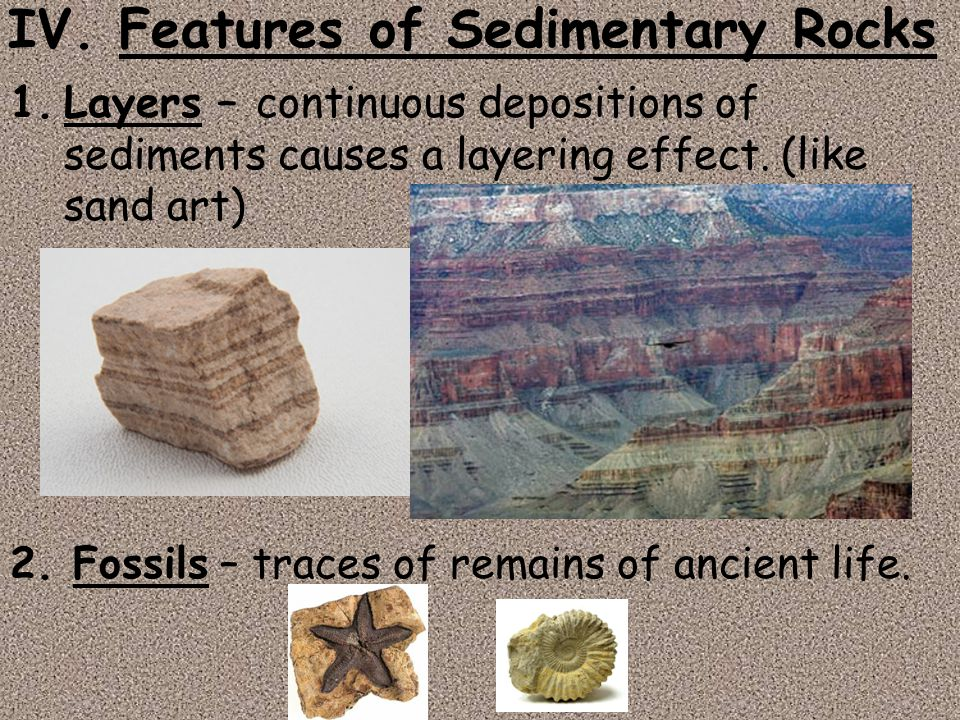 IV. Features of Sedimentary Rocks