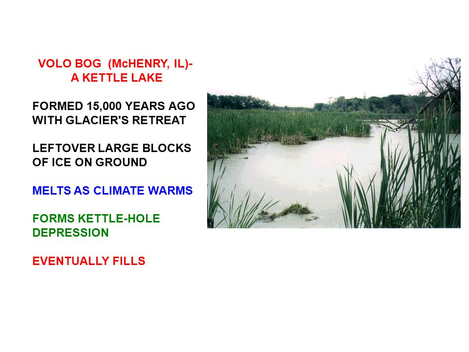 VOLO BOG (McHENRY, IL)- A KETTLE LAKE. FORMED 15,000 YEARS AGO WITH GLACIER S RETREAT. LEFTOVER LARGE BLOCKS OF ICE ON GROUND.