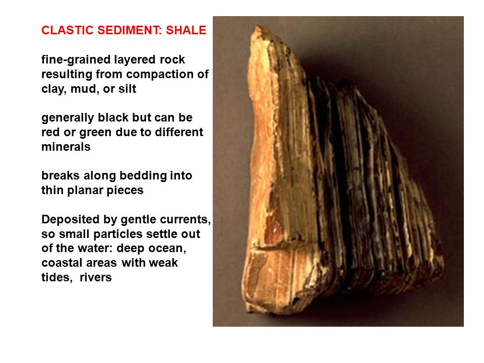 CLASTIC SEDIMENT: SHALE