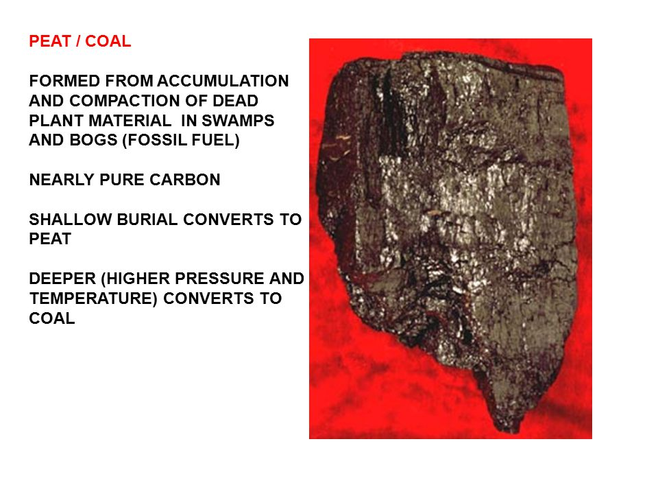 PEAT / COAL FORMED FROM ACCUMULATION AND COMPACTION OF DEAD PLANT MATERIAL IN SWAMPS AND BOGS (FOSSIL FUEL)