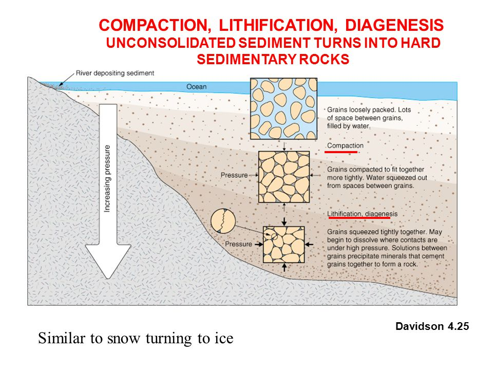 UNCONSOLIDATED SEDIMENT TURNS INTO HARD SEDIMENTARY ROCKS