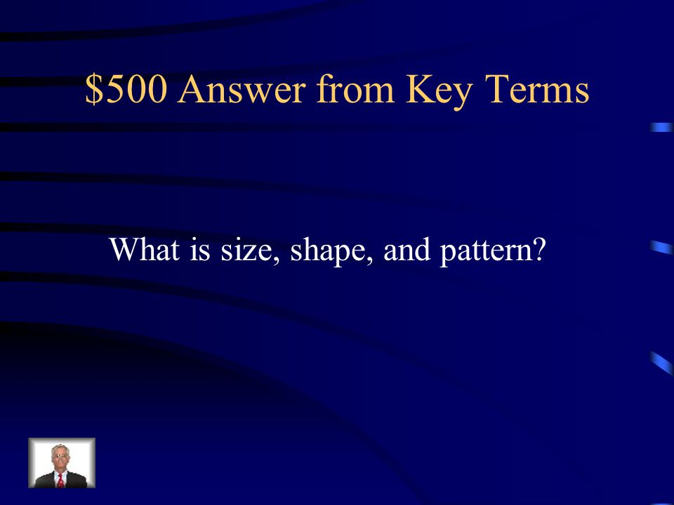 $500 Answer from Key Terms What is size, shape, and pattern