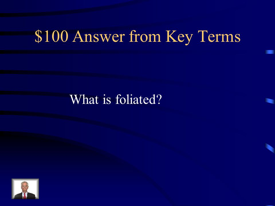 $100 Answer from Key Terms What is foliated