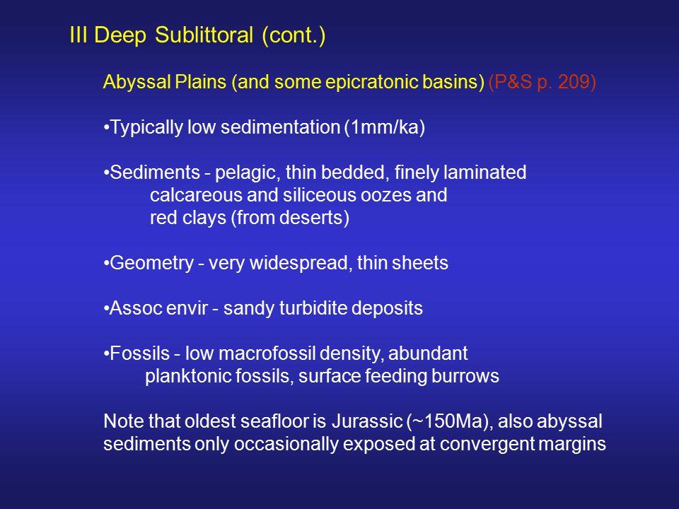 III Deep Sublittoral (cont.)