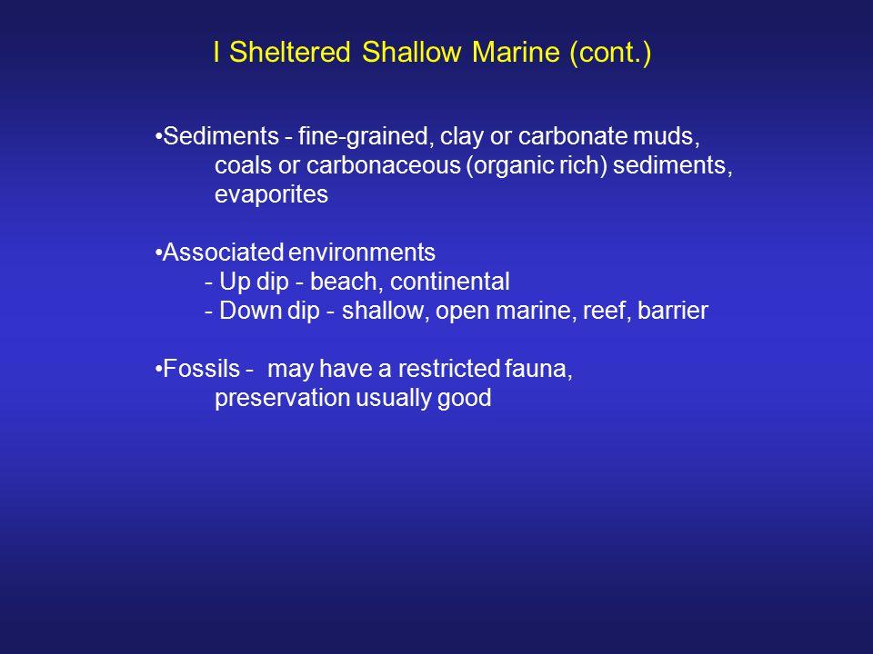 I Sheltered Shallow Marine (cont.)