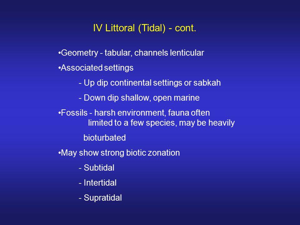 IV Littoral (Tidal) - cont.