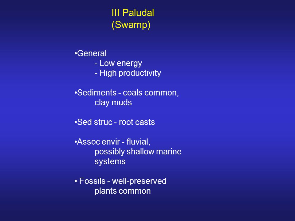III Paludal (Swamp) General - Low energy - High productivity