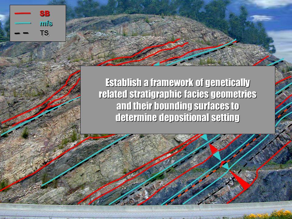 Establish a framework of genetically