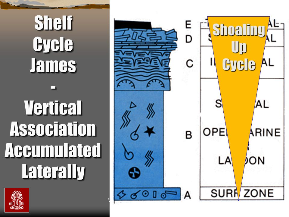 Shelf Cycle James - Vertical Association Accumulated Laterally