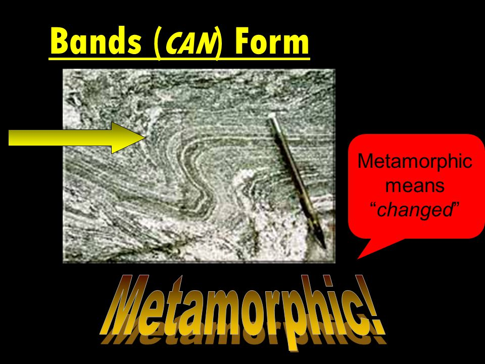 Bands (can) Form
