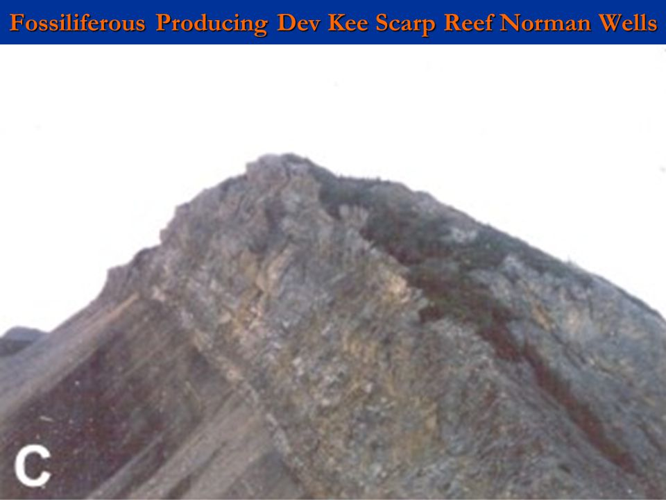 Fossiliferous Producing Dev Kee Scarp Reef Norman Wells