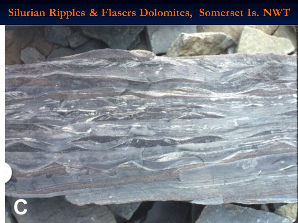 Silurian Ripples & Flasers Dolomites, Somerset Is. NWT