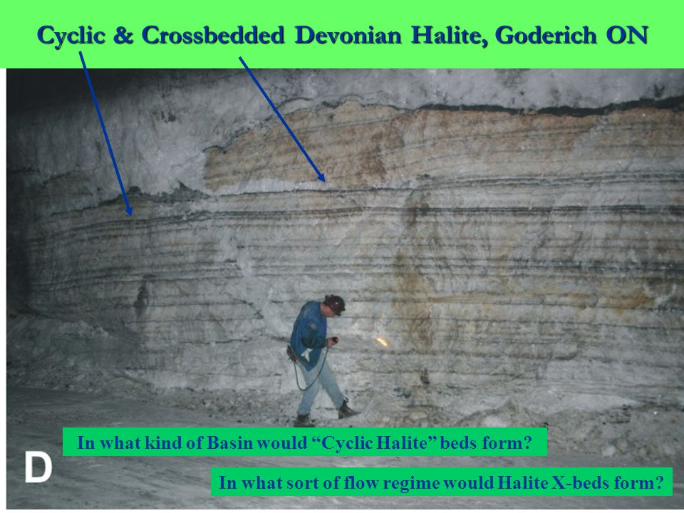 Cyclic & Crossbedded Devonian Halite, Goderich ON